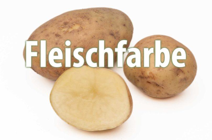 Fleischfarbe von Kartoffelsorten